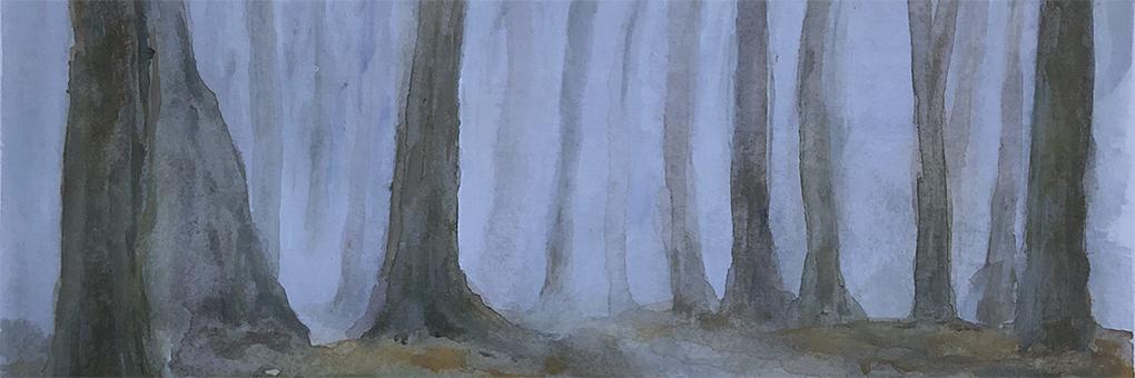 bomen in de mist